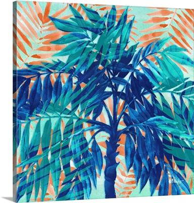 Miami Palm II