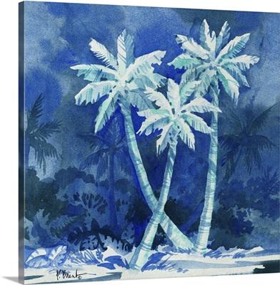 Midnight Palms II