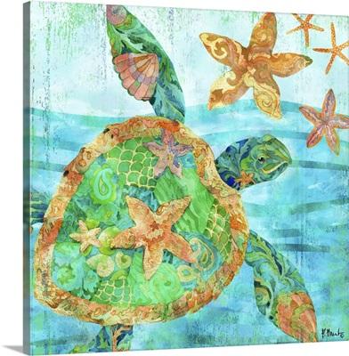 Nassau Turtle