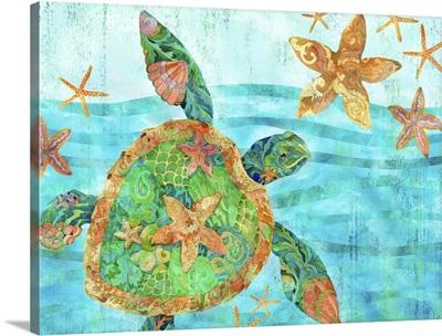 Nassau Turtle Horizontal I