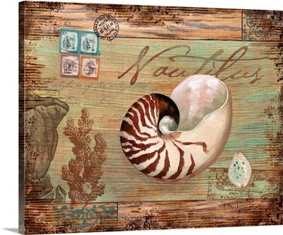 Natura Nautilus