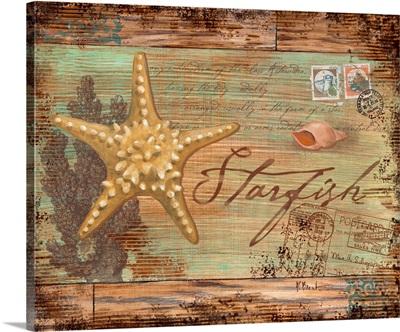 Natura Starfish