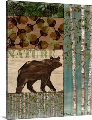 Nature Trail II