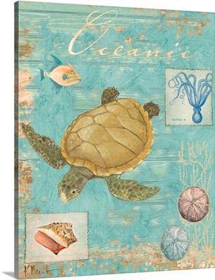 Oceanic Collage Turtle