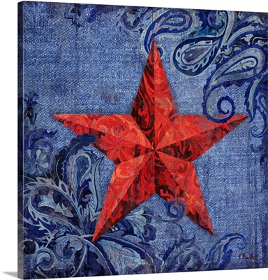 Paisley Barn Star