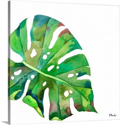 Palm Fronds I - White