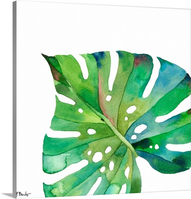 Palm Fronds II - White