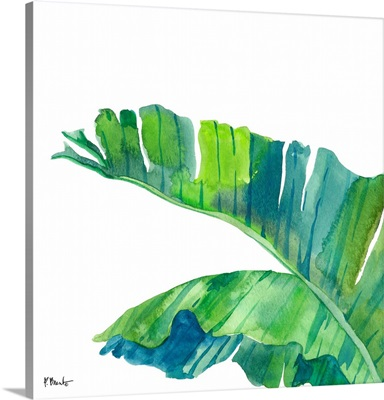 Palm Fronds IV - White