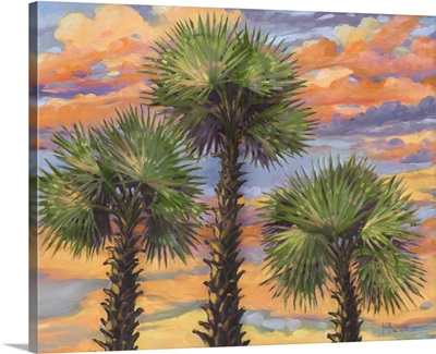 Palm Trio Sunset