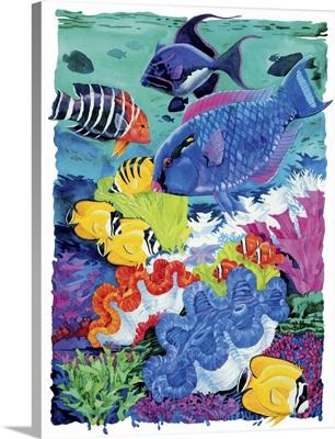 Parrot Reef