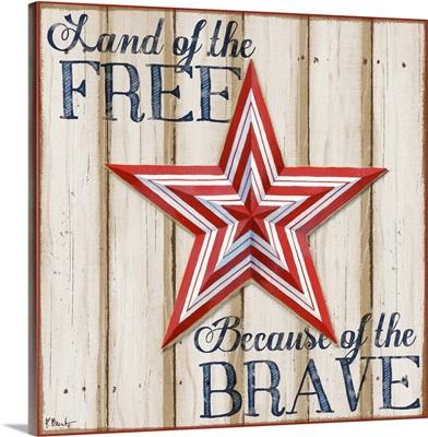 Patriotic Spirit Barn Star I