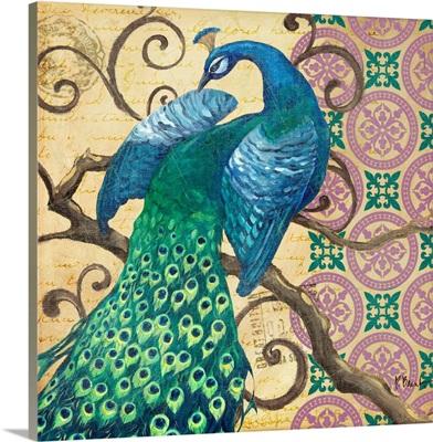 Peacock's Splendor II