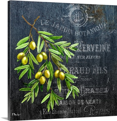 Provencial Herbs V
