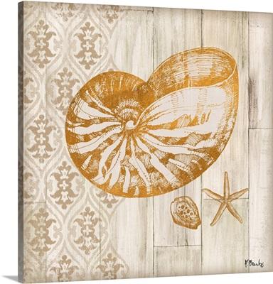 Saint Tropez Shells III