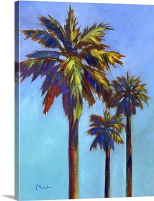 Santa Rita Palm I