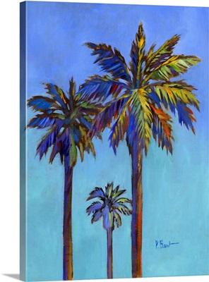 Santa Rita Palm II