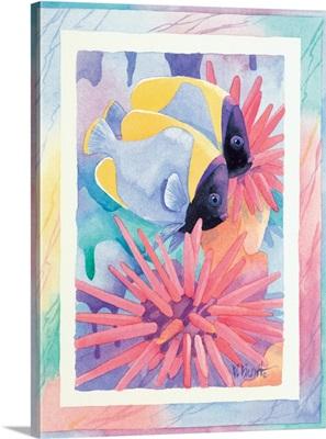 Sea Urchin Reef