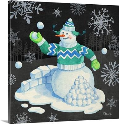 Snow Fun VII