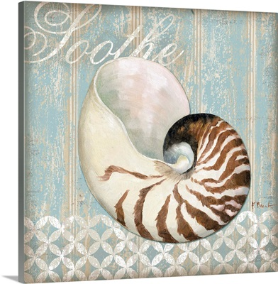 Spa Shells - Soothe