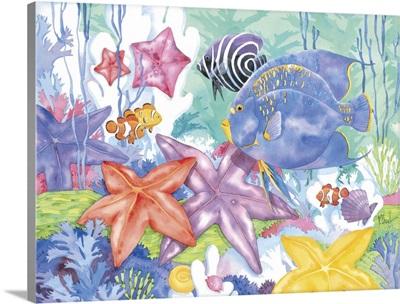 Starry Seas