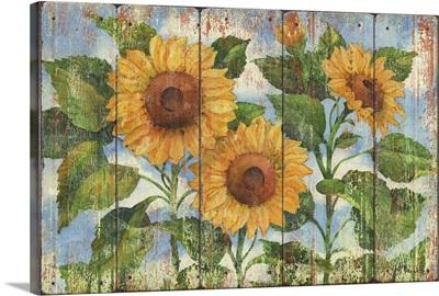 Summer Sunflowers -Distressed