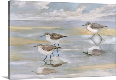 Sunlight Reflections - Three Sandpipers