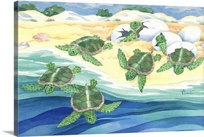 Turtle Nestlings