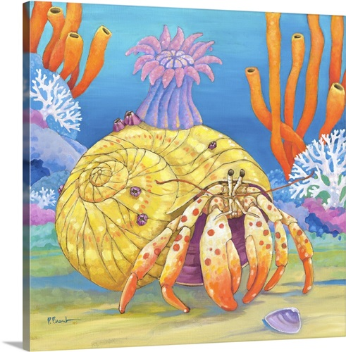 Under the Sea- Hermit Crab Wall Art, Canvas Prints, Framed Prints ...