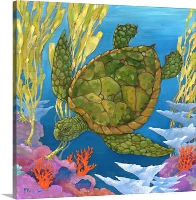 Under the Sea- Turtle