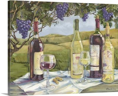 Vineyard Wine Tasting