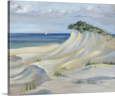 Windsept Dunes