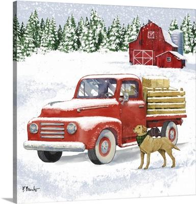 Winter Trucks II