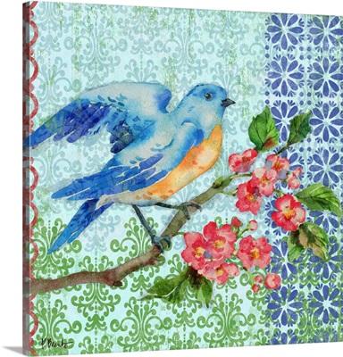 Zealous Bluebird