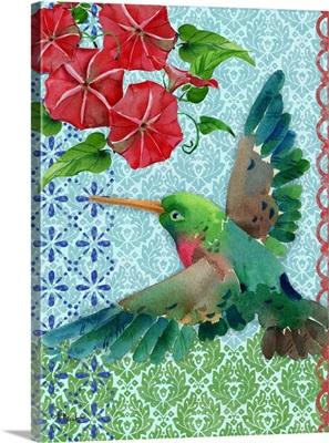 Zealous Hummingbird - Vert