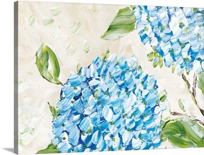 Blue Hydrangeas II