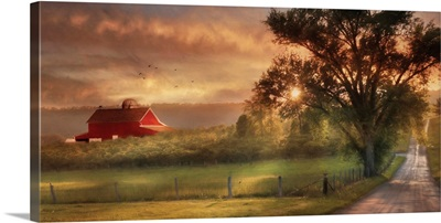 Country Lane Sunset