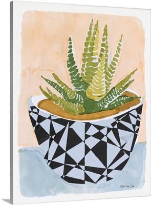 Geo Vase with Succulent