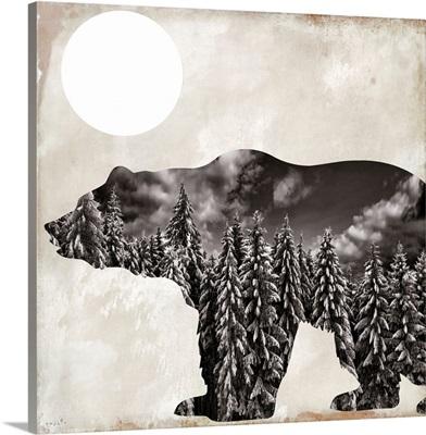 Going Wild Bear