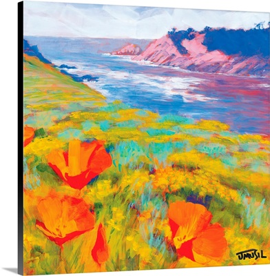 Point Lobos Poppies