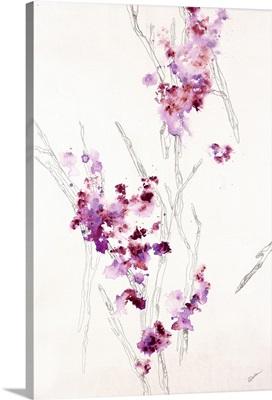 Blossom Anatomy I