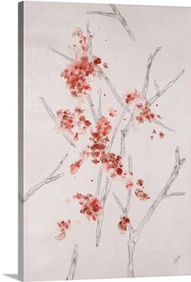 Blossom Anatomy II