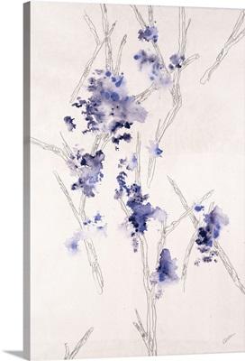 Blossom Anatomy III