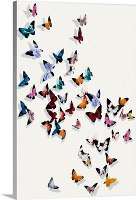Butterfly Wonderland II