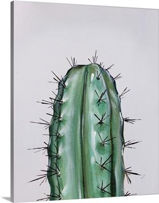 Colorful Cactus I