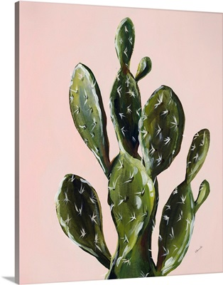 Colorful Cactus V