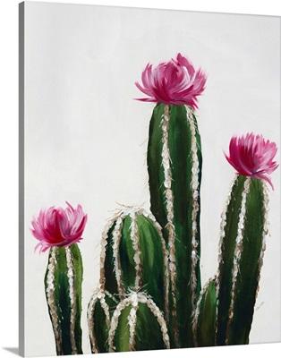 Colorful Cactus VI