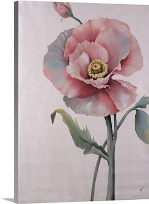 In Full Bloom IV