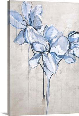 Magnolia Sketch III