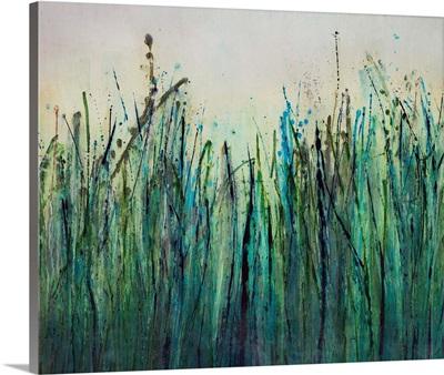 River Reeds in June