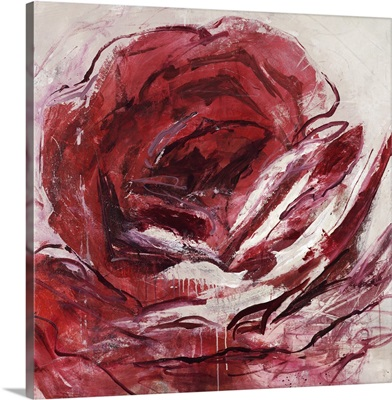 Rose For Warhol